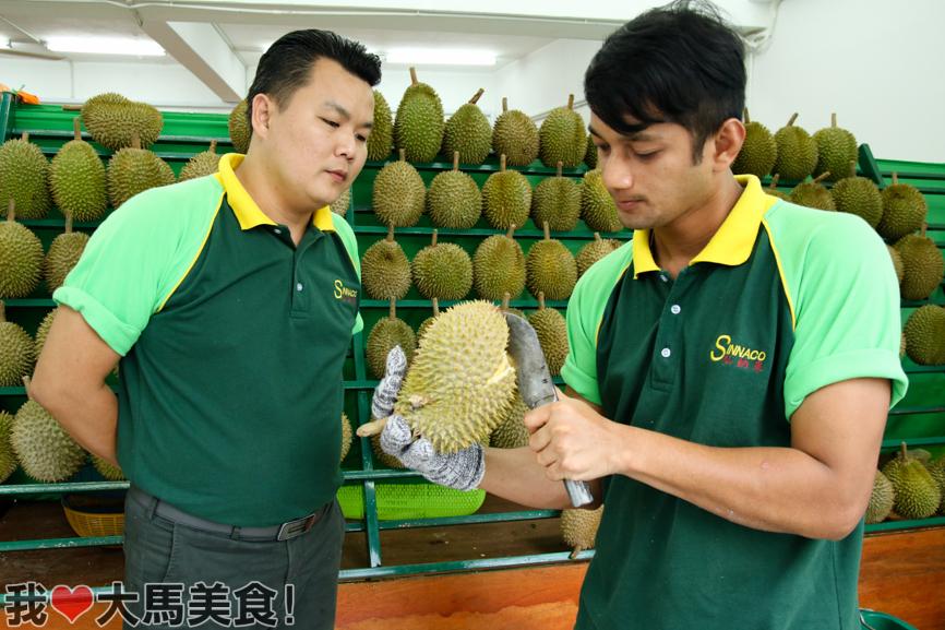 榴莲, 榴莲街, 仙纳果, sinnaco, durian, pj, durian street