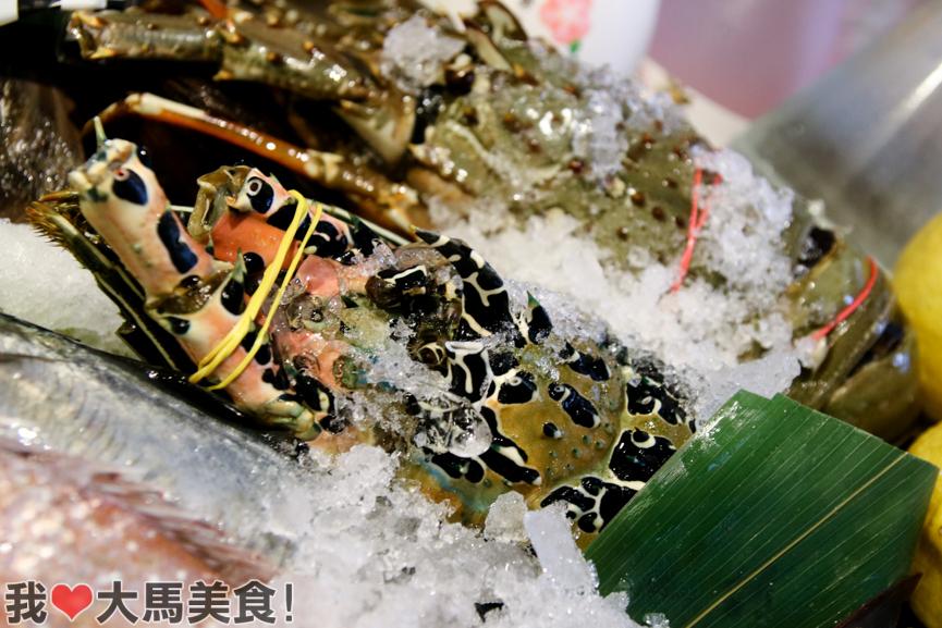 龙虾, 一炭水产, ittan izakaya, solaris mont kiara, kl, japanese restaurant